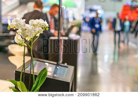 flowers in the center of the exhibition pavilion of the business forum.