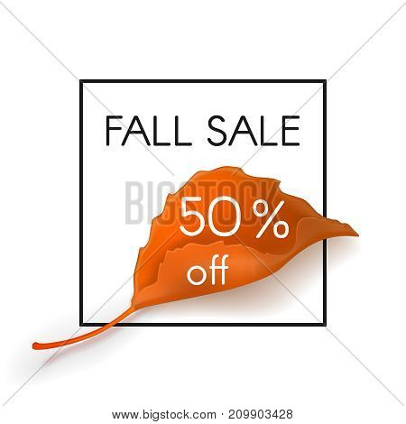 Fall sale. 50 percent off. Vector design for leaflets store or autumn sale  web banner background