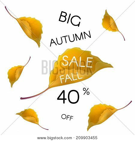 Big autumn sale. Fall 40 percent off. Vector design for shop flyers or autumn sale web banner background
