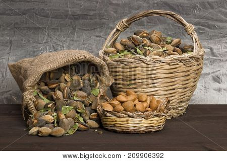 Almonds over a rustic wooden board. Rustic sack and basket. Nutcracker and almond oil.
