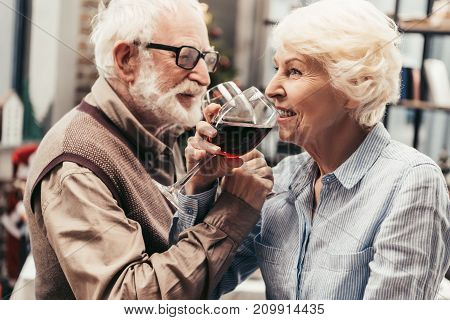 beautiful senior couple drinking red wine together