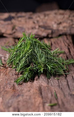 Rosemary Herbs And Medicinal Herbs. Organic Healing Herbs. Fresh Rosemary Bunch Rosemary On Wooden B