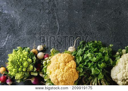 Variety of fresh raw organic colorful cauliflower, cabbage romanesco and radish with bundle of coriander over dark texture background. Top view with copy space. Healthy eating concept