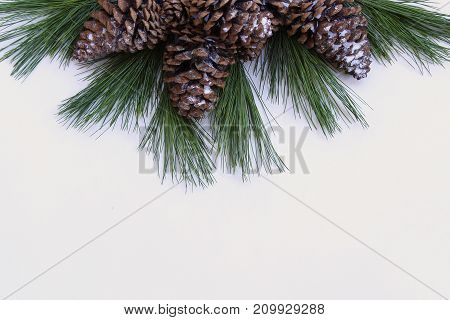 Pine cones, fir tree branch and white snow frame white copy space.