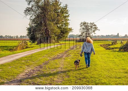 Backlit image of a woman with curly hair who is walking the dog in a rural landscape. Its is in the end of a sunny day in the fall season.
