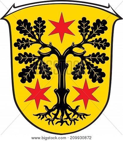 Coat of arms of Odenwaldkreis is a district in the south of Hesse Germany. Vector illustration