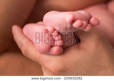 Little fingers. Little legs newborn on background.