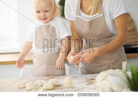 Mother and little daughter are cooking in the kitchen. Spending time all together or happy family concept.