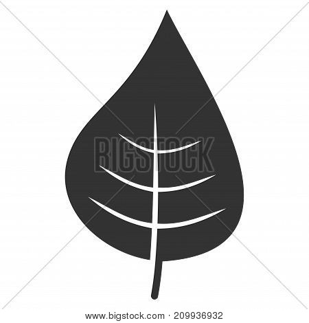 Plant Leaf vector icon. Style is flat graphic grey symbol.