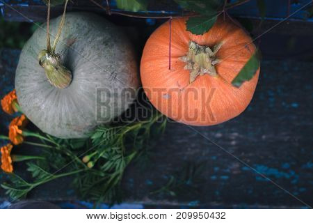 Pumpkin on wooden boards with a blurred background