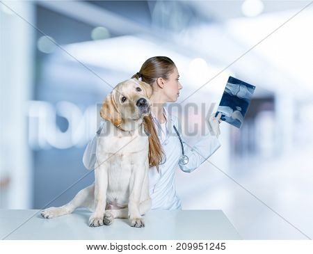 Female young dog vet young adult background view