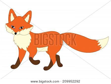 Vector cute cartoon fox. Vector fox. Fox vector illustration