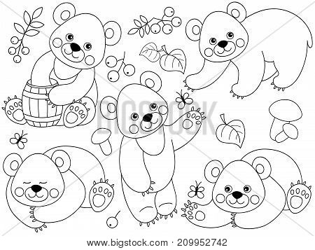 Vector set of black and white cute cartoon forest bears. Vector woodland bears, mushrooms, leaves, nuts and berries. Forest bears vector illustration