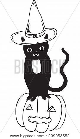 Black cat with hat and pumpkin. Halloween illustration.