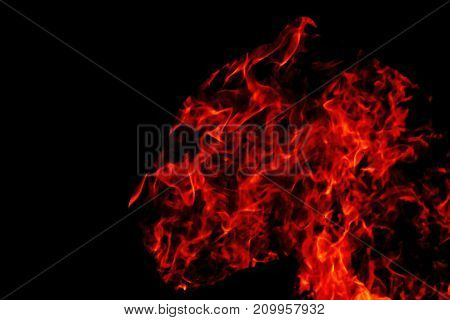panther on fire on a black background , fire, wildlife predators