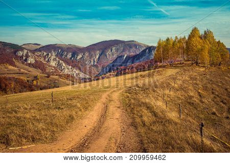Rural Autumn Landscape With A Dirt Road