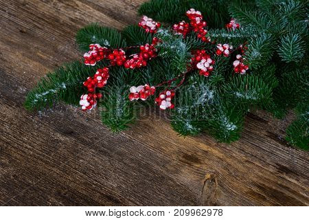 twig with red berries and green evergreen tree on aged wooden background