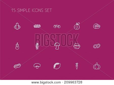 Set Of 15 Editable Vegetable Outline Icons. Includes Symbols Such As Sliced Tomato, Cep, Aubergine And More