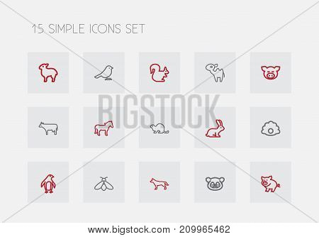Set Of 15 Editable Animal Outline Icons. Includes Symbols Such As Beaver, Piggy, Bumblebee And More