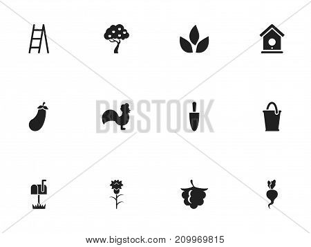 Set Of 12 Editable Planting Icons. Includes Symbols Such As Aubergine, Fruit Woods, Birdhouse And More