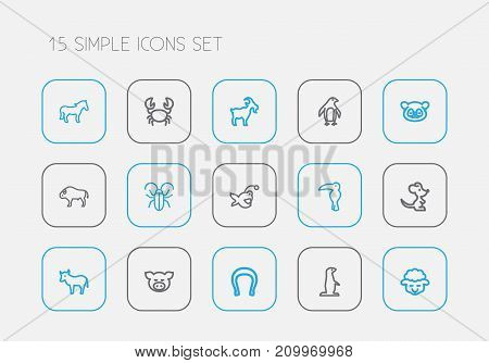Set Of 15 Editable Animal Outline Icons. Includes Symbols Such As Diver, Insect, Goat And More