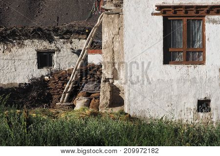 Village courtyard: in perspective one after another white clay walls of houses a wooden staircase leaned against the wall a high green grass summer in the Himalayas Tibet.