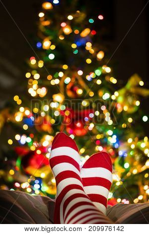 Legs In Stocking At Christmas Tree.