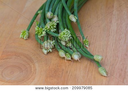 Chives Flower Or Chinese Chive Vegetable