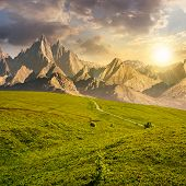 grassy slopes and rocky peaks composite. gorgeous summer landscape with magnificent mountain ridge over the pleasing green meadows. lovely surreal fantasy scenery at sunset poster