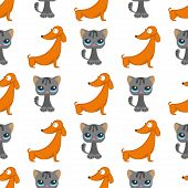 Cats dogs vector illustration cute animal funny decorative characters color abstract feline domestic trendy pet drawn. Happy mammal fur adorable breed seamless pattern background. poster