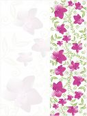 illustration of greeting card with pink blooms poster