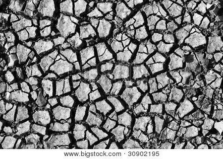 Cracked soil. In B/W. Use for background or texture