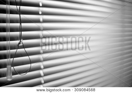 Closed Shutters And Rope. Jalousie Background. Blinds Bw