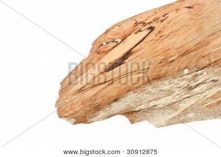 Piece Of Wood Look Like Dragon Head.