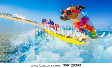 Jack Russell Dog Surfing On A Wave , On Ocean Sea On Summer Vacation Holidays, With Cool Sunglasses