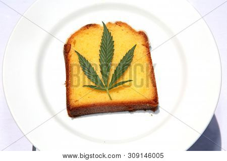 Lemon Cake with Marijuana Leaf. Edible Marijuana. Medical and Recreational Marijuana.