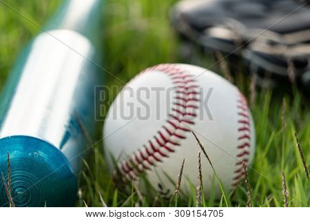 The Baseball And Equipment On The Lawn