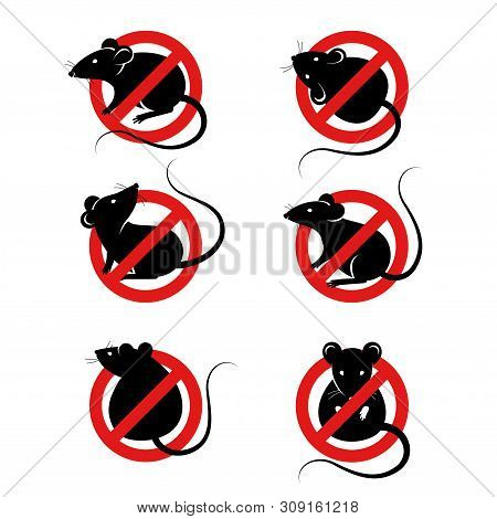 Set Of Anti Pest Signs With Black Rats Silhouettes Under Red Circle. Vector Illustration. House Mous