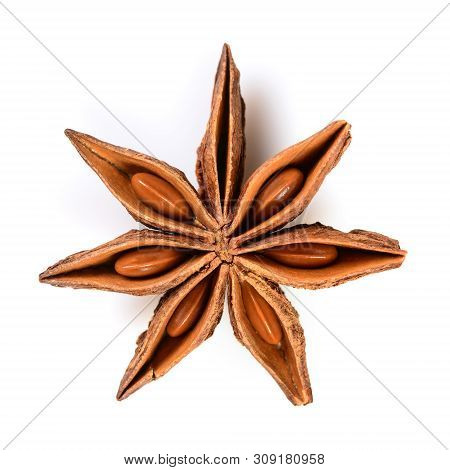 Star Anise. Single Star Anise Fruit. Macro Close Up Isolated On White Square Background, Top View Of