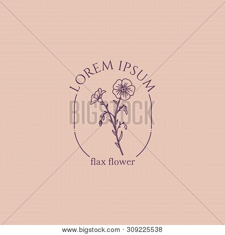 Vector Logo Of The Flower Of Flax. For The Design Of Linseed Oil, And Linseeds . Botanical Illustrat
