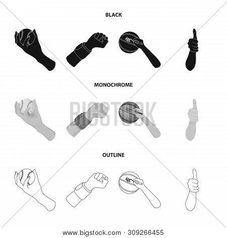 Vector Illustration Of Animated And Thumb Symbol. Set Of Animated And Gesture Stock Vector Illustrat