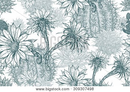 Floral Seamless Pattern. Blooming Cacti. Blu And White Background. Template For Fabrics, Textiles, W