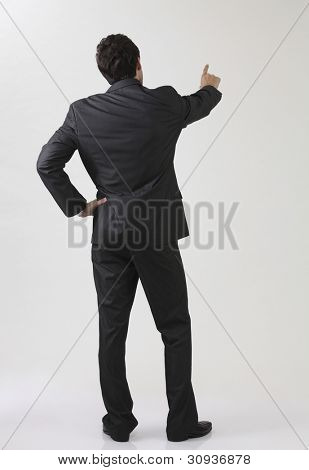 Businessman from behind, pointing at something