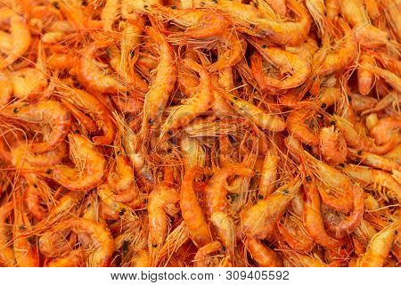 Countless Orange Shrimp, Fresh Marine Food. Delight Of The Sea