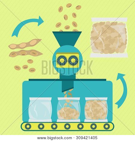 Textured Soy Protein Series Production. Soy Beans Being Processed. Soy Meat. Textured Soy Being Pack