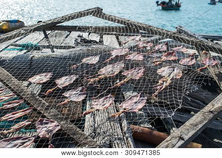 Seamen Life Retro Concept With Dried Squid Fishing In The Sea And Ocean Summer Traveling Concept