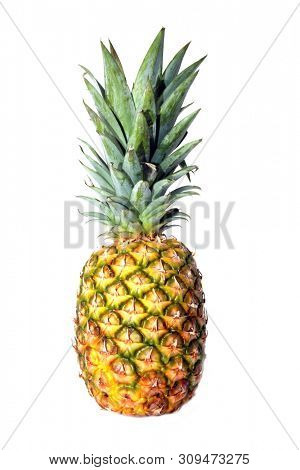 Pineapple. Golden Pineapple. Isolated on white. Room for text. Clipping path. Clip Art Photography.