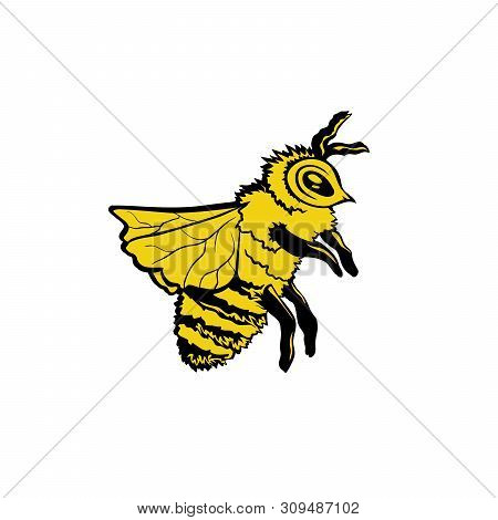 Honey Bee Hand Drawn Vector Illustration. Animalistic Ink Pen Sketch. Yellow Insect Sketch. Doodle H