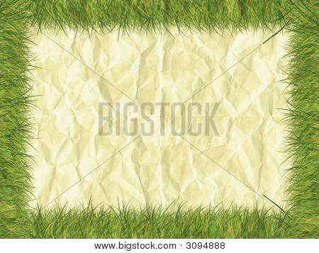 Grass Frameon Paper - Digital Illustration