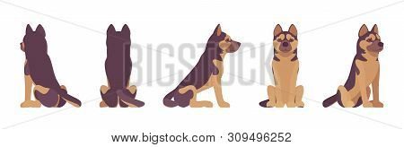 Shepherd dog sitting. Working breed, family pet, companion for disability assistance, search, rescue, police, military help. Vector flat style cartoon illustration, white background, different views poster